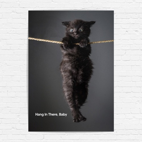 Poster «HANG IN THERE, BABY»